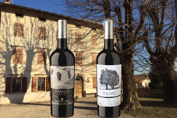 I vini d'eccellenza della Cantina Ronco Margherita: Parvus e Tiliae