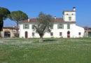 A Villa Maseri di Oleis la rassegna Olio e Dintorni