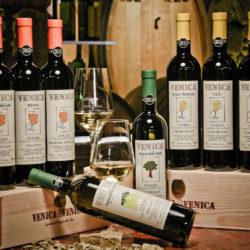 Tàlis di Venica, Pinot Bianco del Collio