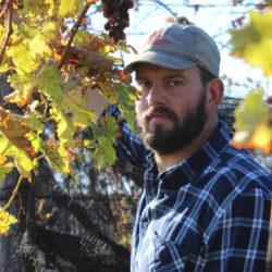 Marco Pinat, i suoi vini racchiudono un'emozione. Ora in consegna a casa tua